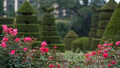 More Longwood Gardens