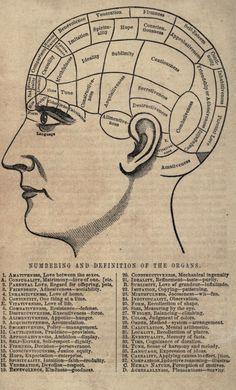 Phrenology chart c. 1859 (pseudoscience)