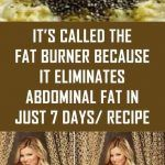 It's called the fat burner because it eliminates abdominal fat in just 7 days/ Recipe - Daily Healthy 24 Lemon Cleanse, Flat Tummy, Flat Abs, Flat Stomach, Abdominal Fat, Stubborn Belly Fat, Boost Your Metabolism, Burn Belly Fat, Fat Burner