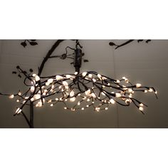 Love this bed chandelier <3!