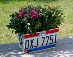 License plate planter-love this idea too!