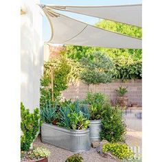 Outstanding Grow Like A Pro With These Organic Gardening Tips Ideas. All Time Best Grow Like A Pro With These Organic Gardening Tips Ideas. Growing Vegetables In Containers, Home Grown Vegetables, Container Gardening Vegetables, Vegetable Gardening, Vegetables Garden, Veggie Gardens, Garden Plants, Box Garden, Growing Veggies