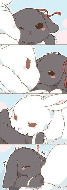 Hôn hôn ver thỏ..