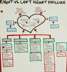 Right vs Left Heart failure