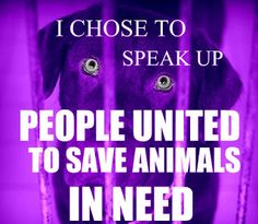 The Voice For The Voiceless: JOIN OUR CAUSE