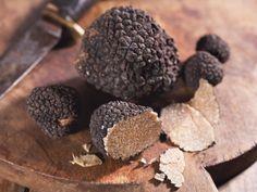 6 Surprising Health Benefits of Truffles Health Benefits Of Mushrooms, Truffle Hunting, Ayurvedic Diet, White Truffle, Truffles, Stuffed Mushrooms, Healthy Eating, Nutrition, Dishes