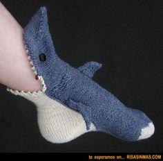 Calcetines Tiburón …