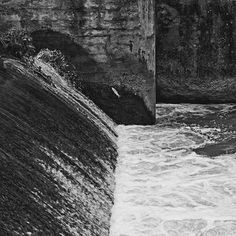 bwstock.photography - photo | free download black and white photos  //  #jump #fish #water Black White Photos, Black And White, Free Black, Fish, Water, Photography, Gripe Water, Photograph, Black N White