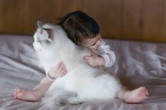 Ragdoll and baby...true love.
