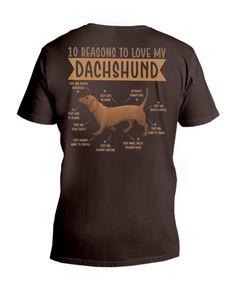 10 Reasons To Love Dachshund Best Dog - Brown dashhound puppy, puppy house, corgi husky mix puppy #minidachshund #sausagedog #dogsofinstagram, dried orange slices, yule decorations, scandinavian christmas Dachshund Quotes, Dachshund Shirt, Dachshund Gifts, Mini Dachshund, Cat Quotes, Dog Shirt, Silver Dapple Dachshund, Dapple Dachshund Puppy, Dachshund Puppies For Sale