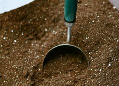 Soilless Potting Mix: What Is It and Why Is It So Important?