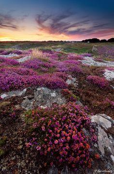 le de Groix, Bretagne, France - Merveilleuses balades sur cette île sauvage by Pierre Nivoliers