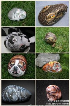 animal rocks art. inspired....