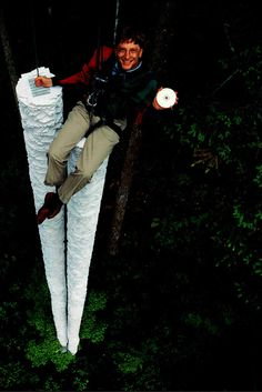 """This CD-ROM can hold more information than all the paper that's here below me""- Bill Gates,1994"