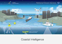 Coastal intelligence