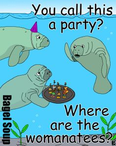 Bagel Soup - Manatee Party