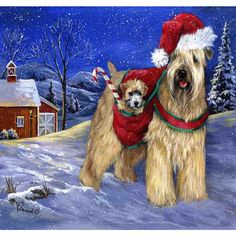 Precious Pet Paintings Soft Coated Wheaten Terrier W X H Christmas Flag Christmas Dishes, Christmas Cats, Terrier Wheaten, Terriers, Cross Paintings, Animal Paintings, Dog Christmas Pictures, Dish Drying Mat, Rhinestone Art