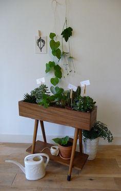 60′s/mid century wooden planter/flower stand.  Jaren '60 plantenbak. Teak fineer bak (van binnen bekleed met plastic) en plank, teakhouten poten met rubberen vloerdoppen. Staat solide op zijn poten.  De bak heeft diverse beschadigingen: de fineerlaag laat op diverse plaatsen los (zie foto's).  Afmetingen: b 64 x h 58 x d 20 cm.  Prijs: € 40,-