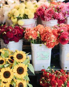 Cheerful mornings  #pikesplacemarket #seattle #summertravels #willjourney…