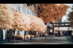 Hong Kong-based designer Yiu Yu Hoi uses infrared photography. It is fascinating how shockingly different the city scenes appear.