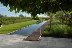 pool im garten 50 Amazing Natural Swimming Pools That Will Delight You - Page 10 of 50 Swimming Pool Landscaping, Swimming Pool Designs, Swimming Pools, Lap Pools, Indoor Pools, Backyard Pools, Pool Decks, Modern Garden Design, Contemporary Garden