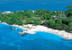 Swingers vacation jamaica hot girls wallpaper