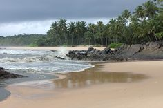 Ezhara beach ,Kannur Hand Hygiene, Kerala India, Places Of Interest, Coconut, Paintings, River, Landscape, Country, Beach