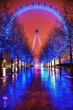 A gorgeous shot of the London Eye, a giant Ferris wheel situated on the banks of the River Thames in London, England.