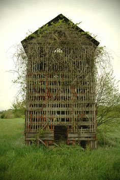 creepy/cool chicken coop
