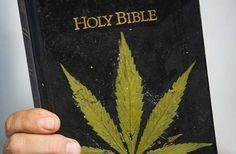 Iglesia Católica se pronuncia a favor del Cannabis Medicinal (VIDEO) - http://growlandia.com/marihuana/iglesia-catolica-se-pronuncia-a-favor-del-cannabis-medicinal-video/