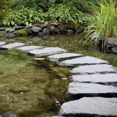 Photo:  | thisoldhouse.com | from Putting in a Pond