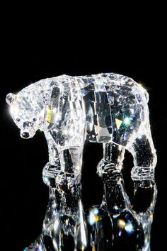 Swarovski Mother Bear Figurine In Clear. this is a crystal bear. Swarovski Ornaments, Swarovski Crystal Figurines, Swarovski Crystals, Crystal Kingdom, Glass Photography, Glass Figurines, Glass Animals, Crystal Collection, Stones And Crystals