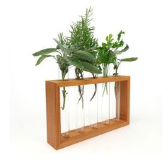Flower Vase And Holder Set, $50, now featured on Fab. -I'm thinking a great countertop herb station!