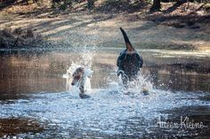 Pleun en Djeena lekker rennen  #rottweiler, #cavalier, # Fun