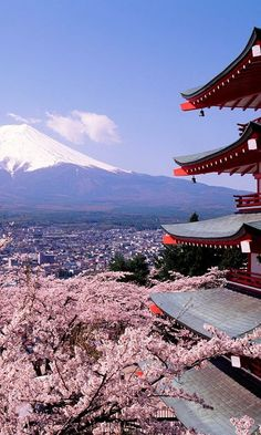 Chureito Pagoda overlooking Fujiyoshida City and Mount Fuji, Japan.  This location is especially beautiful during cherry blossom season in mid April.