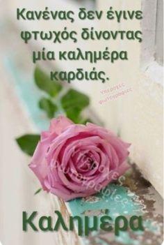 Good Morning Happy, Good Morning Greetings, Beautiful Pink Roses, L Love You, Night Photos, Good Night, Life Quotes, Mornings, Google