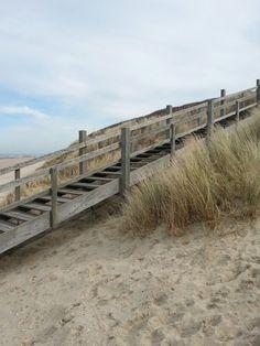 Domburg, Strand, Natur, Meer, beach, sea