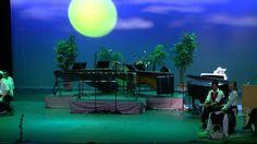 Xylophone Ragtime Concert