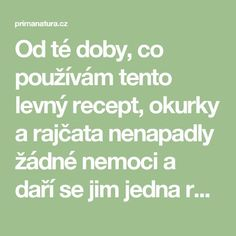 Od té doby, co používám tento levný recept, okurky a rajčata nenapadly žádné nemoci a daří se jim jedna radost! - primanatura.cz Garden Club, Home And Garden, Diy And Crafts, Flora, Remedies, Gardening, Humor, Health, Garden Ideas