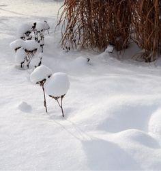 Snow, Outdoor, Outdoors, Outdoor Games, Outdoor Life, Human Eye