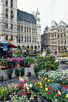 Le Grand Place, Brussels, Belgium