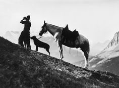 Title: Cowboy with horse and dog on top of Burgess Pass, British Columbia. Date: [ca. 1914]