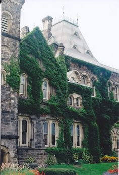 Love stone houses covered in ivy.
