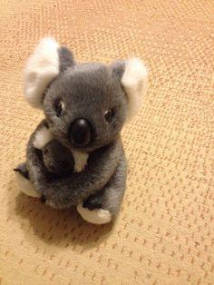 Cuddly Grey Sleeping Cute Koala Bottle Opener Fridge Magnet