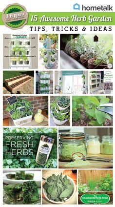 Herbs Gardening Herb gardens are perfect for indoors! I can't wait to plant my own and start seeing those fresh herbs sprout :) - 15 Awesome Herb Garden Tips, Tricks and Ideas Preserve Fresh Herbs, Easy Herbs To Grow, Growing Herbs, Fast Growing, Hydroponic Gardening, Hydroponics, Organic Gardening, Container Gardening, Succulent Gardening