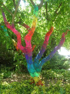 árvore arco-iris