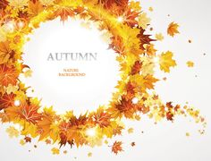 Maple Leaf Autumn Background Vector (Free)   Free Vector Archive