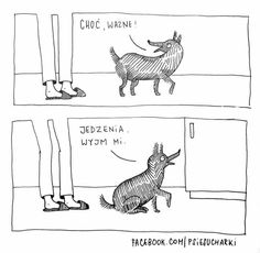 Jedzenia wyjm mi. Funny Dogs, Moose Art, Humor, Nom Nom, Animals, Smile, Line, Animales, Animaux