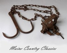 Vintage SMALL ANIMAL IRON TRAP w/GRAPPLE DRAG HOOK ON CHAIN Fox Beaver Coyote | eBay