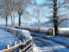 Snow covered country lane / Winter - / - - Your Local 14 day Weather FREE > www.weathertrends... No Ads or Apps or Hidden Costs